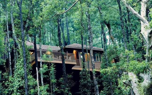 Coorg Package